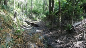 Runoff path from Brooks County
