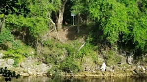 Suwannee County sign across river from SRSP trail, 30.4072222, -83.1563889