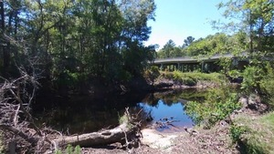 East bank, Withlacoochee River