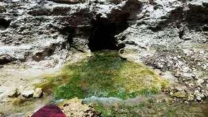 Movie: Very green sulfur spring water, 30.3903800, -82.9266500