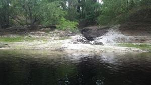 Creek confluence, 30.3663300, -82.8778100