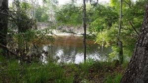Suwannee River, 30.4085670, -83.1580930
