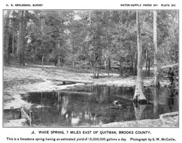 1898, by S.W. McCallie of the state geological survey