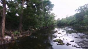 Downstream to the US 84 bridge