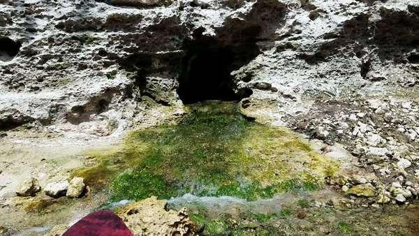 Movie: Very green sulfur spring water,