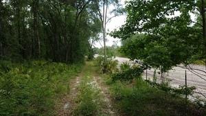 l. Suwannee River State Park, r. Sabal Trail 30.3639987, -83.1251918