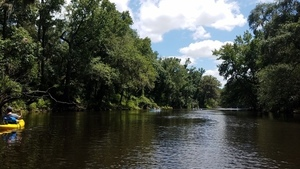 On downstream, 30.5028100, -83.2425400