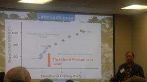 [Threshold Phosphorus Load, Lake Lochloosa]