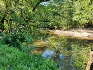 [Upstream, Withlacoochee River, 10:48:35, 30.846869, -83.347516]
