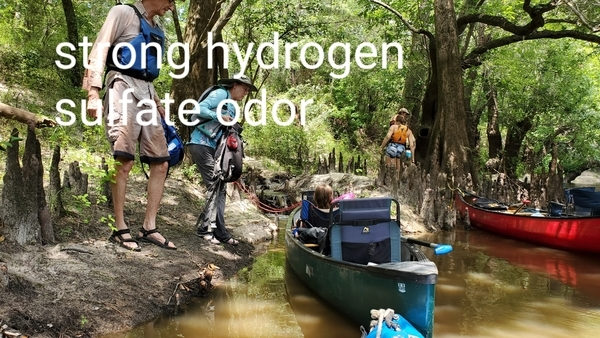 [Strong hydrogen sulfate odor, 14:48:22, 30.8183397, -83.4494719]