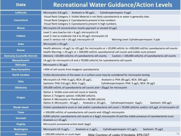 [Recreational Water Guidance/Action Levels]