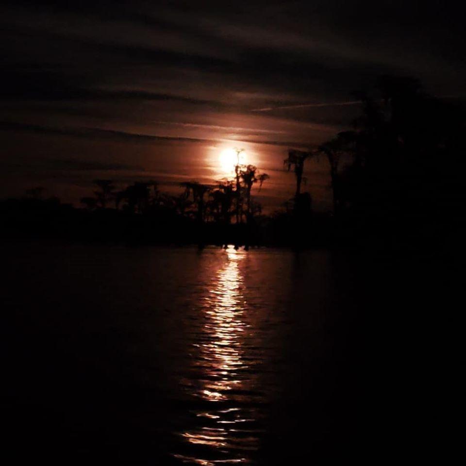 [Moonrise cypress arc (MM)]