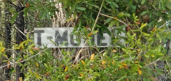 [T-Model Road sign]