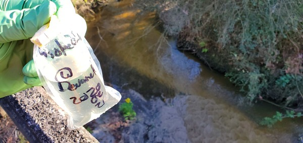[Sample, Crooked Creek @ Devane Road]