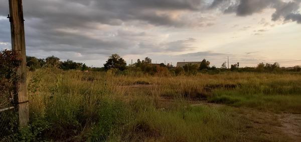 [Many acres]