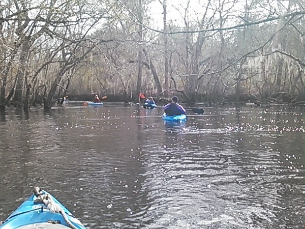 600x450 Left, in Alapaha deadfalls, by John S. Quarterman, for WWALS.net, 17 January 2015