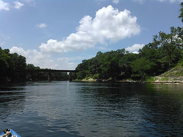Railroad bridge, Suwannee RSP