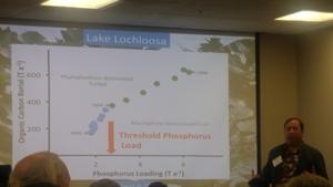 [Threshold Phosphorus Load, Lake Lochloosa]