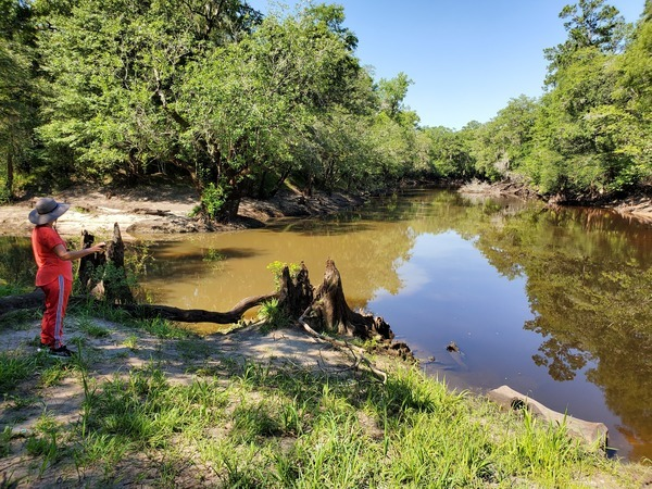 [Downstream Withlacoochee River, 10:48:15, 30.846955, -83.347810]
