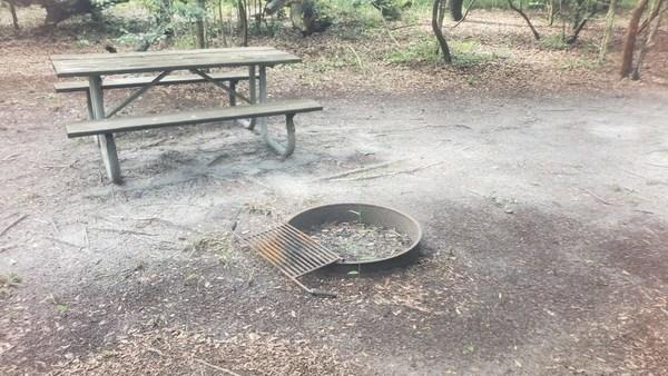 [Fire pit]