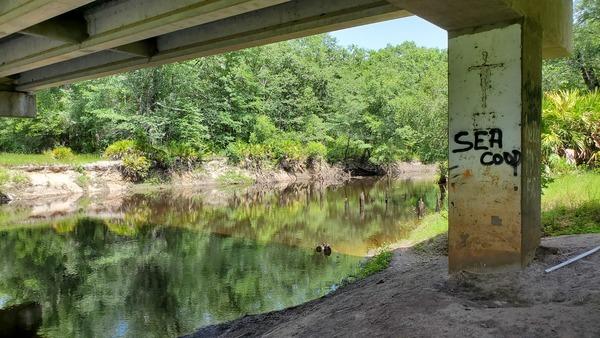 [Wooden piers visible under new bridge]