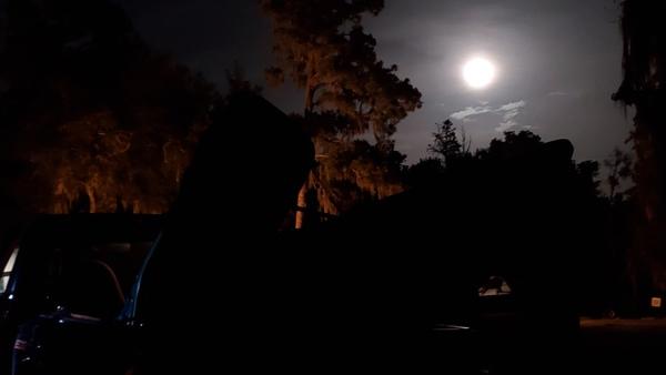 [Human lights, moonlight]