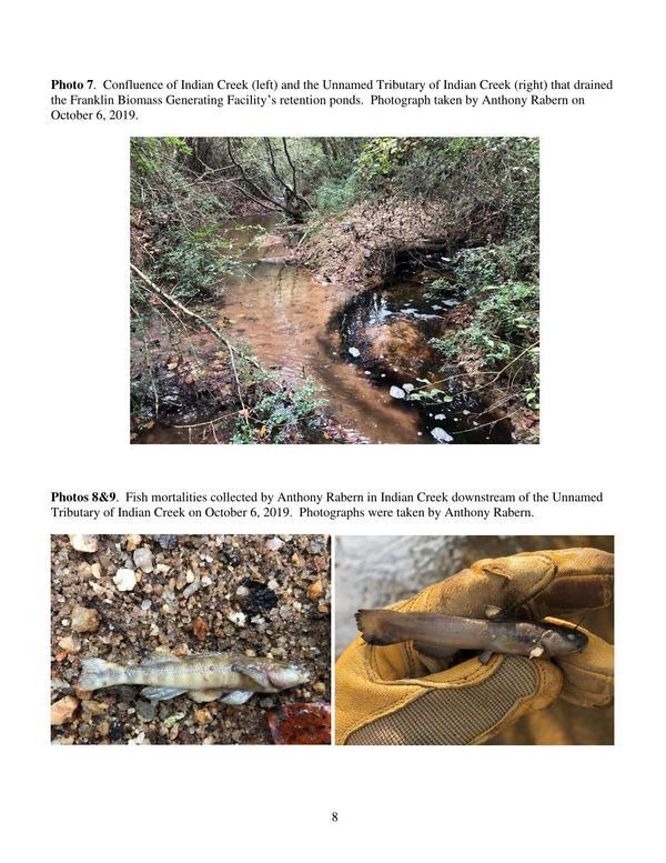 [Fish-Kill-Report-IndianCreekFranklinCo10.09.19-1-0008]