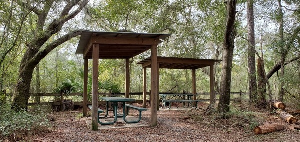 [Picnic tables and roofs, 2019:10:17 16:00:50, 30.6294432, -83.3186451]