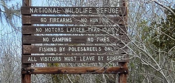 [Okefenokee National Wildlife Refuge, 11:33:52, 30.7943270, -82.4359550]