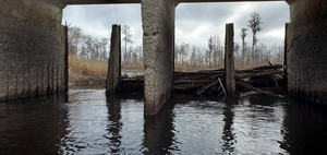 [Some deadfall, but not enough to stop the water, 09:51:04, 30.8039456, -82.4176042]