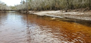 [Yellow and red water, 11:21:17, 30.7970167, -82.4293755]