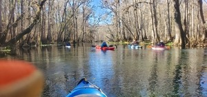 [Follow the blue sky canopy water trail, 11:35:31, 29.9638452, -82.7640995]