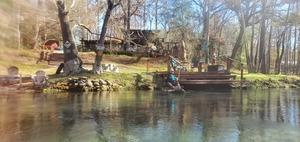 [Alligator Risk at dock, 13:41:41, 29.9441660, -82.7914873]