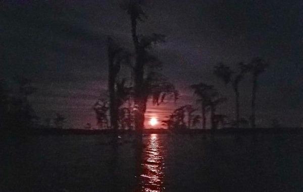 [Violet moonrise (NWX)]