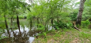 [Upstream at Knights Ferry]