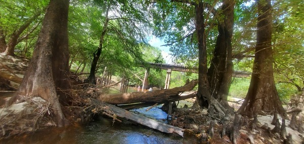 [RR bridge through driftwood, 11:45:54]