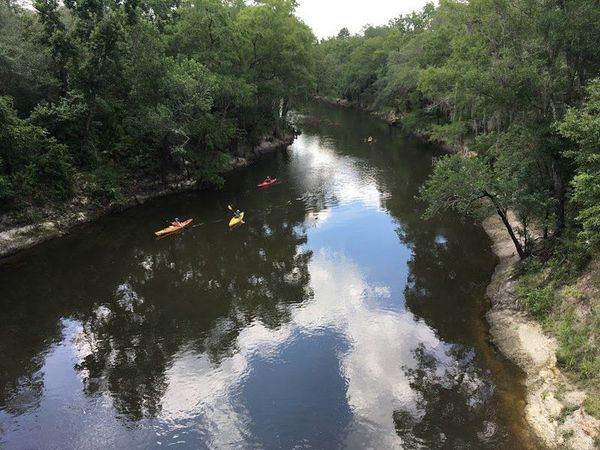 [Paddle Georgia from Spook Bridge, Withlacoochee River]