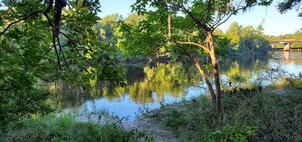 [View downstream to the bridge, 2020:07:19 08:10:59, 30.2465, -83.246967]