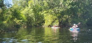 [Paddlers in the creek, 2020:07:18 15:27:29, 30.25388, -83.2532]