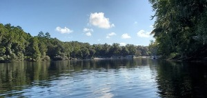 [Boat Ramp to River Camp upstream, 2020:07:19 09:31:37, 30.2450317, -83.2491508]
