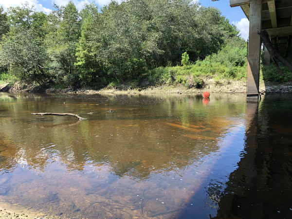 [2.24' (85.8' NAVD88; Low Stage 85.5') Withlacoochee River @ US 84]