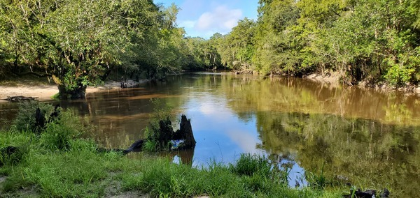 [Withlacoochee River, left and downstream, Little River on right]