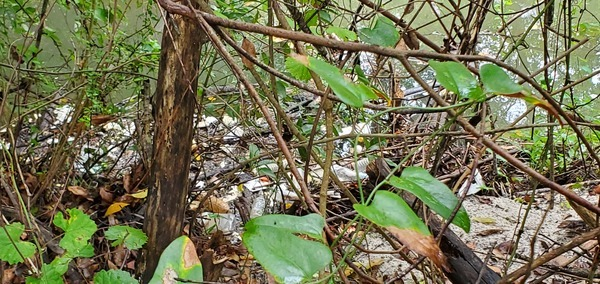 [Mound of trash in Sugar Creek]