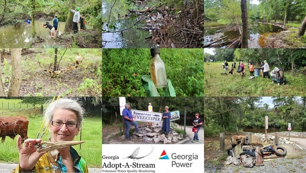 [Bucket, need boat, Withlacoochee River, spider, bottle, handoff, Great Blue Heron, trash, Volunteer of the Year --GA AAS]