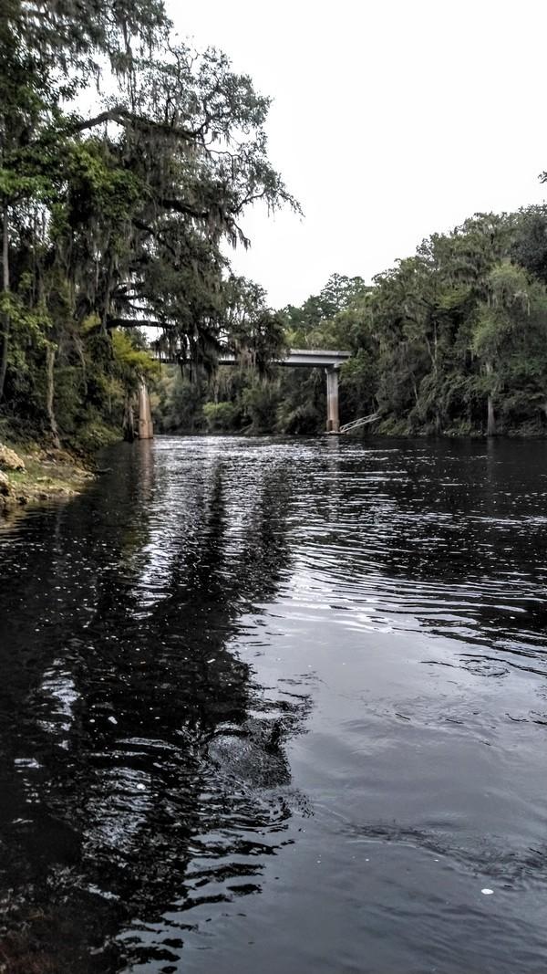[Upstream, Gibson Park, Suwannee River]