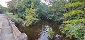 [Upstream west side]