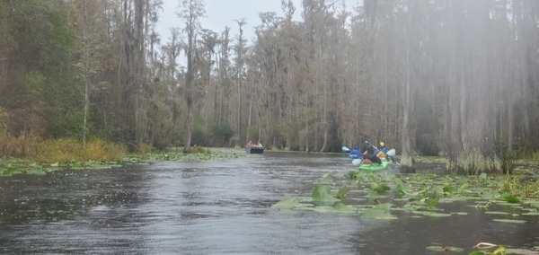 [Traffic jam, Middle Fork, Suwannee River, 11:16:01]