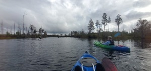 [Gretchen Quarterman following up the Suwannee River, 10:38:02]