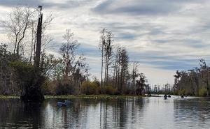 Help Suwannee Riverkeeper Save the Okefenokee Swamp