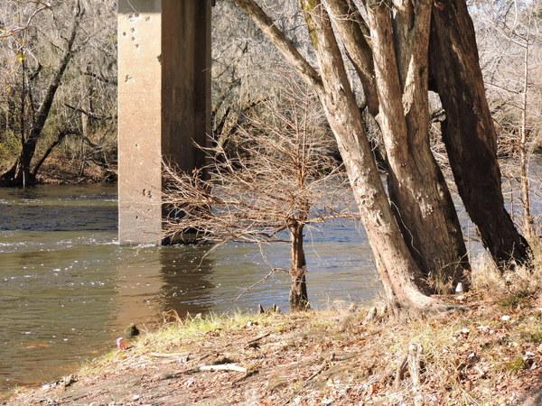 [Nankin Upstream]